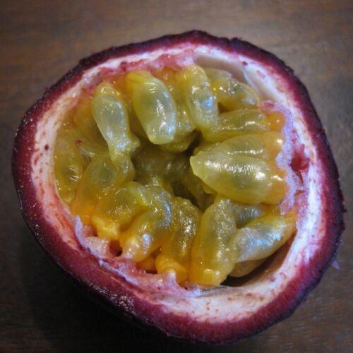 ~Purple Lilikoi~ Passiflora edulis EDIBLE VINE Purple Passion Fruit 25 SEEDS