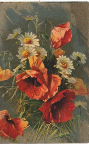 Postcard Poppies. Ref A21