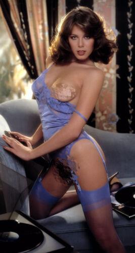 1981 Playboy Magazine Playmate Rare KELLY TOUGH Promo Poster 18x36 NEW