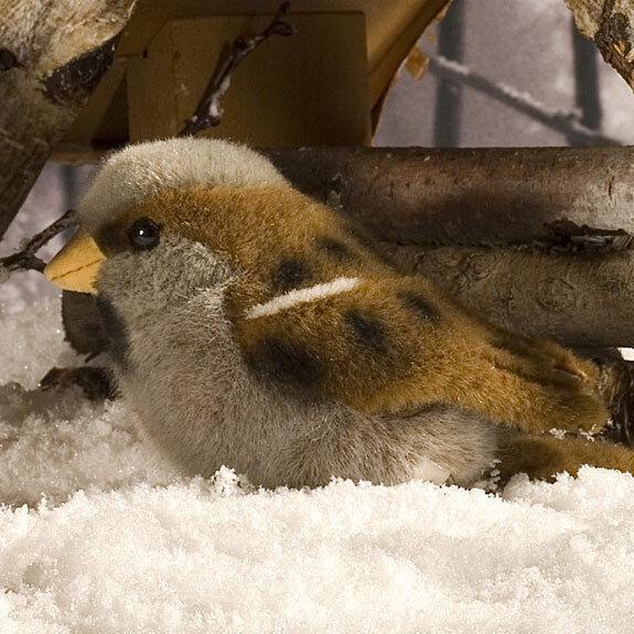 Sparrow - exquisite & collectable soft toy bird by Kosen   Kösen - 18cm - 5690