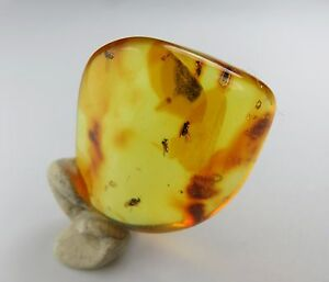Genuine baltic amber stone with Six Flies fossils insects inclusions 3.80 grams