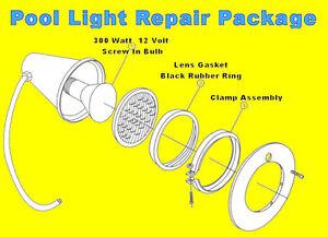 Swimming Pool Spa Light Repair Kit Package Bulb Clamp Gasket Seal Screw Hayward Ebay