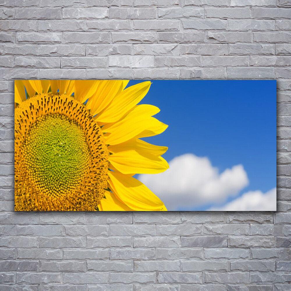 Wandbilder Glasbilder Druck auf Glas 120x60 SonnenBlaume Wolken Pflanzen