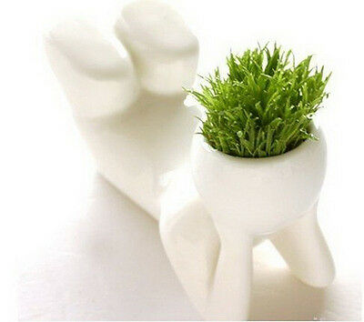 Worth Mini Novel Bonsai Grass Doll Hair Man Plant Rely Popular Gift