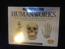 "EYEWITNESS KITS HUMAN SKELETON 18"" CASTING KIT NIB GREAT FOR KIDS HUMANWORKS"