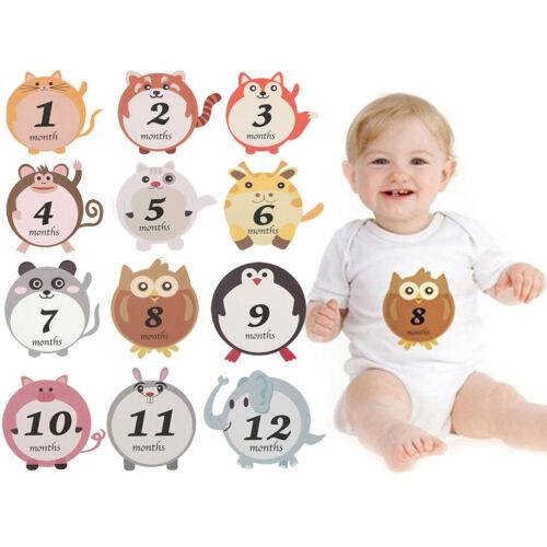 New Unisex Cartoon Infant Birthday Party Baby Monthly Sticker Newborn Photo Prop