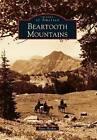 Beartooth Mountains by Patty Hooker (Paperback / softback, 2012)