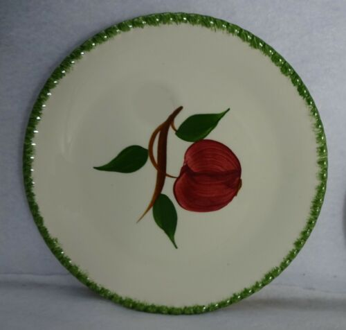 """BLUE RIDGE SOUTHERN Pottery QUAKER APPLE 5-piece Place Setting 9-1//4/"""" Luncheon"""