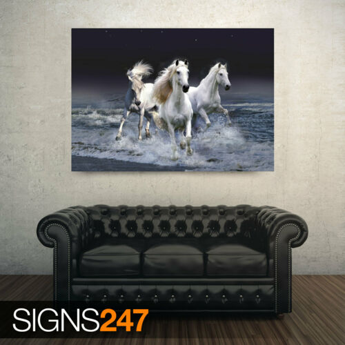 Animal Poster Picture Poster Print Art A0 A1 A2 A3 A4 MYSTIC HORSES 3665