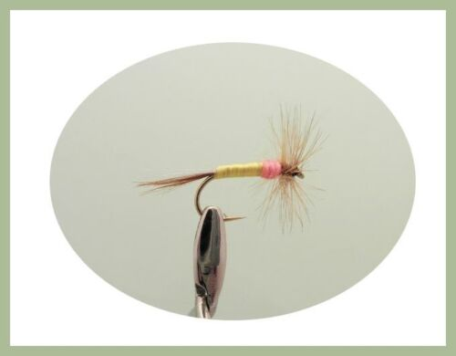 White Moth Tupps /& Caenis Mixed 12 to 16 Dry Trout Flies,18 Pack Fly Fishing