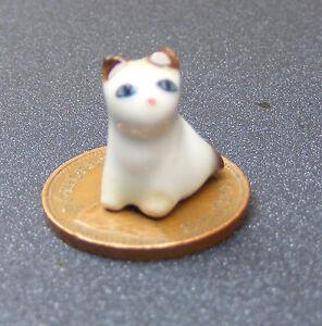 1:12 échelle Maison De Poupées Blanc Chaton-chat Avec Un Brun Rayé Queue Ornement Zq-afficher Le Titre D'origine Beau Lustre