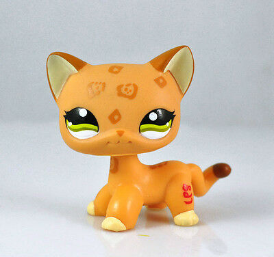 Littlest Pet Shop Cat Collection Child Girl Boy Figure Toy Loose Cute LPS828