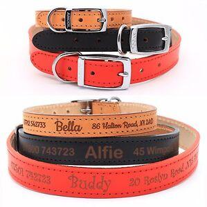 Personalisiertes-Leder-Hundehalsband-Welpenhalsband-Feinste-Qualitaet-von-Ancol