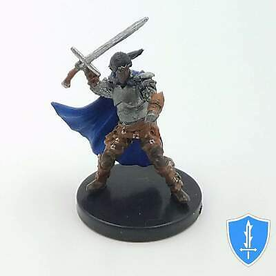 014 Veteran Leader Dungeon of the Mad Mage D/&D Icons of Realms