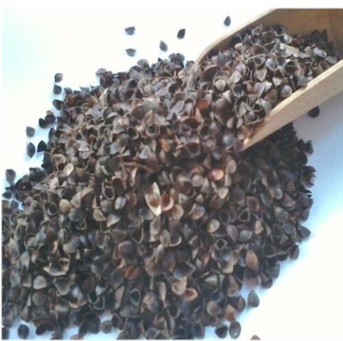 Organic Buckwheat Yoga Bolster