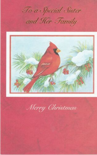 Christmas Card with Envelope for Sister /& Family