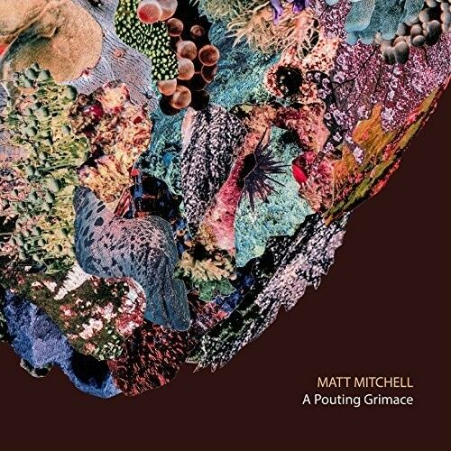 Matt Mitchell - A Pouting Grimace [New CD]