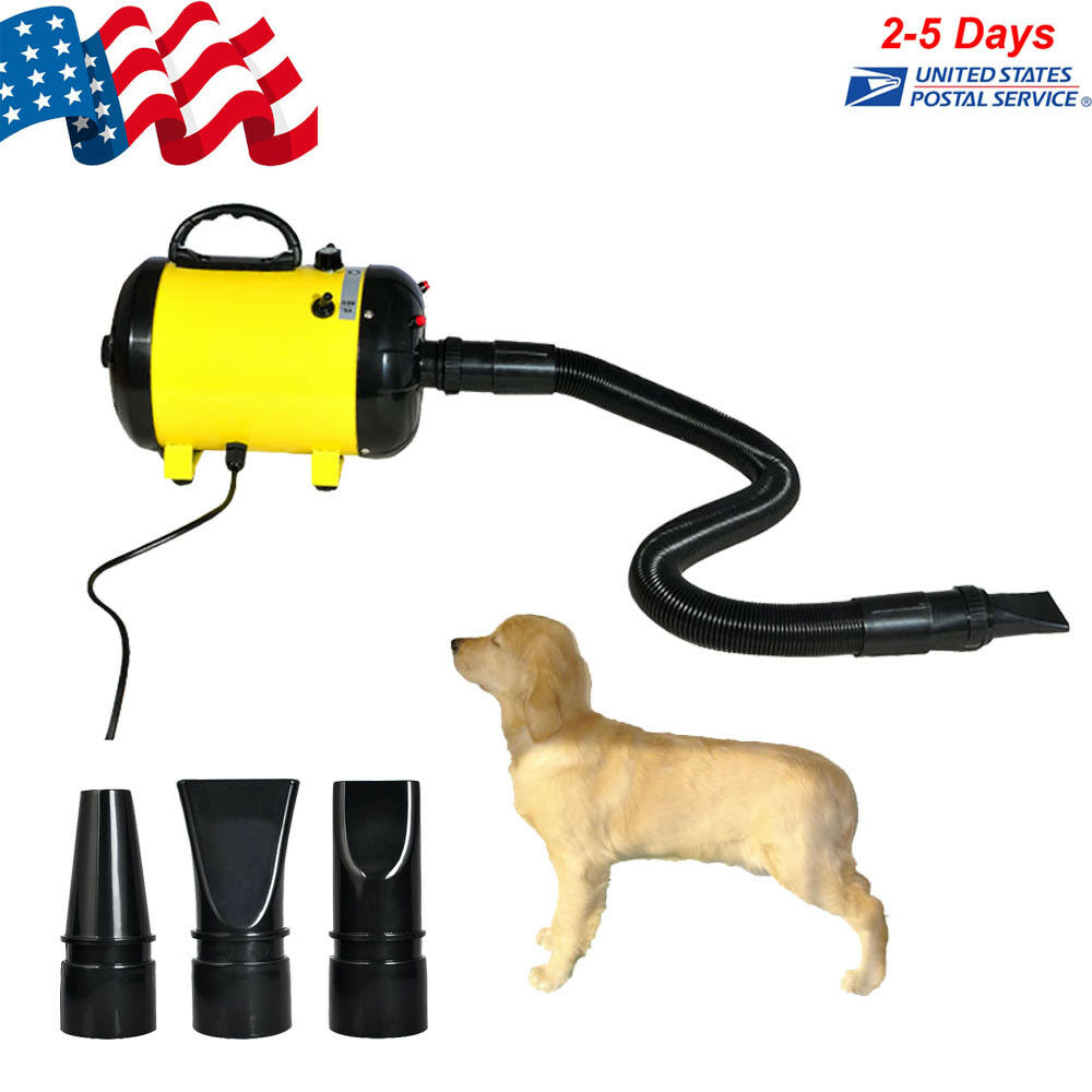 2400W Adjustable 2-Speed Grooming Pet Hair Dryer Dog Cat Air Blower 25-65 m s CE