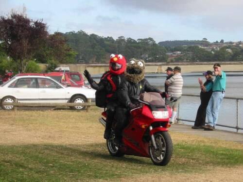 Brown Helmet Hedz Motorcycle Helmet Cover