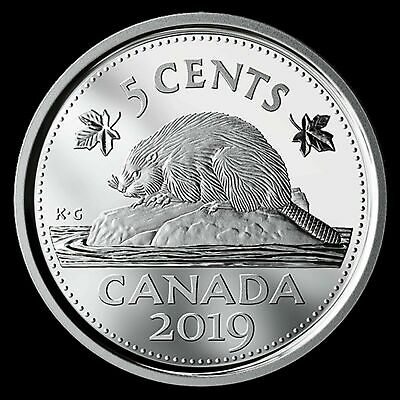 in proof finish from set 2019 Canada Classic design Loon dollar steel