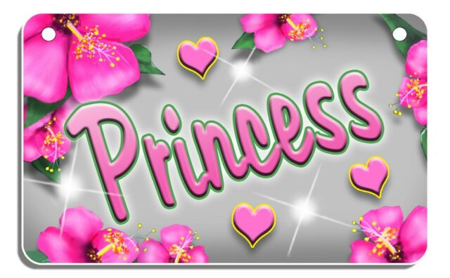 Pink Hibiscus Auto License Plate Personalize Gifts Name Text Any Color Flowers