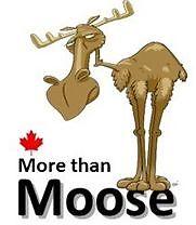 More than Moose