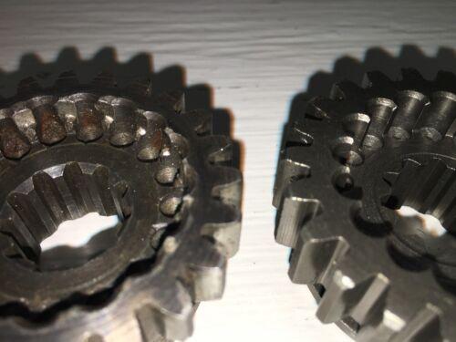 3rd Gear Wheel Horse #3523