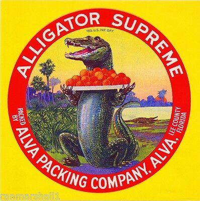 Alva Lee County Florida Alligator Supreme Orange Citrus Fruit Crate Label Print