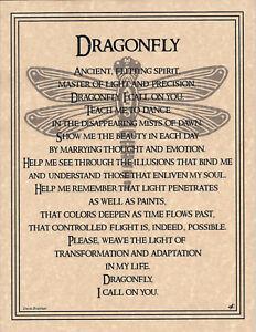 DRAGONFLY-PRAYER-Shaman-Animal-Spirit-Poster-8-1-2X11-NATIVE-AMER-Celtic-Wicca