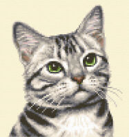 SILVER TABBY CAT, KITTEN ~ Complete counted cross stitch kit + all materials