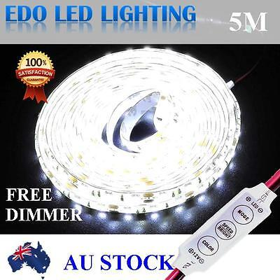 Waterproof Cool White 300 LED DC 12V 5M 5050 SMD Leds Strip Light Car Dimmer