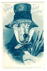 POSTCARD GERMAN DRESSED DOG STROEFER BLUE MONOTINT NEW ...