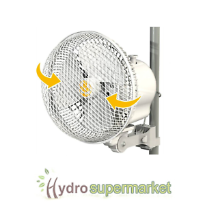 Image is loading SECRET-JARDIN-6-034-MONKEY-OSCILLATING-FAN-20w-  sc 1 st  eBay & SECRET JARDIN 6
