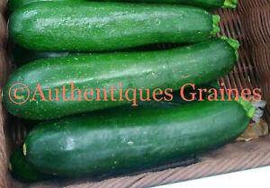 15-30-Graines-de-Courgette-Verte-Noire-Potager-Legumes-Plantes