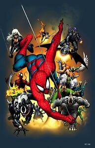 Details About Black Cat Venom Hobgoblin Lizard Electro Shocker Scorpion Spider Man Villain Art