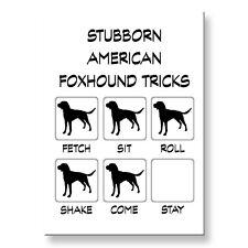 American Foxhound Stubborn Tricks Fridge Magnet Steel Case Funny
