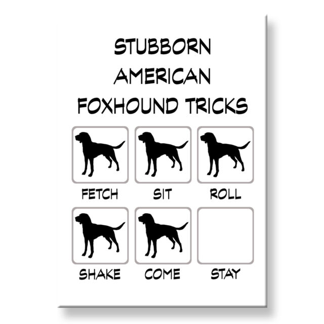 Dachshund Stubborn Tricks Fridge Magnet