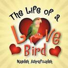 The Life of a Lovebird by Maedeh Ashrafizadeh (Paperback / softback, 2012)