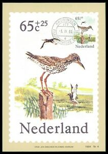 DéTerminé Pays-bas Mk 1984 Faune Oiseaux Rotschenkel Maximum Carte Maximum Card Mc Cm Bb84-afficher Le Titre D'origine