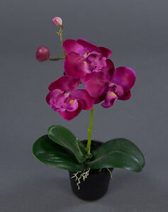 orchidee 22cm fuchsia im topf lm kunstpflanzen k nstliche blumen kunstblumen 4260355155534 ebay. Black Bedroom Furniture Sets. Home Design Ideas