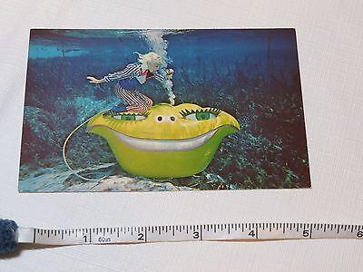 Weeki Wachee Florida postcard RARE mermaid nutty professor VINTAGE RARE travel