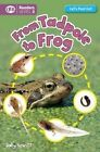 From Tadpole to Frog by Sally Hewitt (Hardback, 2014)