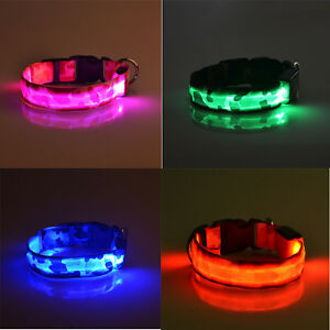 Image Is Loading Unique Waterproof Pets Dog Led Flash Night Lights
