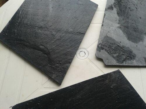 20kg Schieferplatten 20cm-40cm Landschaftbau Trittplatten Granit Garten Bachlauf