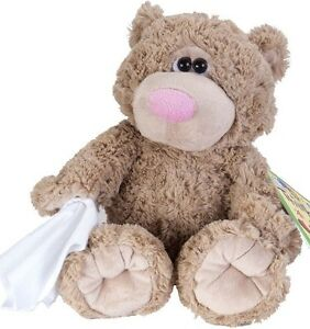 Sick teddy bear cold get well soon with tissue stuffed animal 12 image is loading sick teddy bear cold get well soon with altavistaventures Choice Image