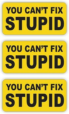 You Cant Fix Stupid Hard Hat Stickers / Welding Helmet Decal / Vinyl Label Funny