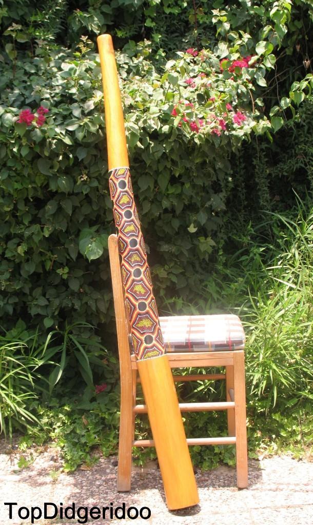 Termiten Ausgehöhlte Didgeridu 59