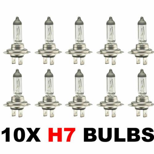 10 x H7 HALOGEN HEADLAMP HEADLIGHT CAR VAN BULBS 477 499 12V 55W NEW 2PIN BULK