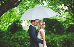 BULK-10-x-White-Golf-Size-Umbrellas-Weddings-Photoshoots-130cm-diameter