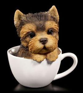 Hunde Figur - Yorkshire Terrier Welpe in Tasse - Süßes Tier Baby Spaß lustig Fun